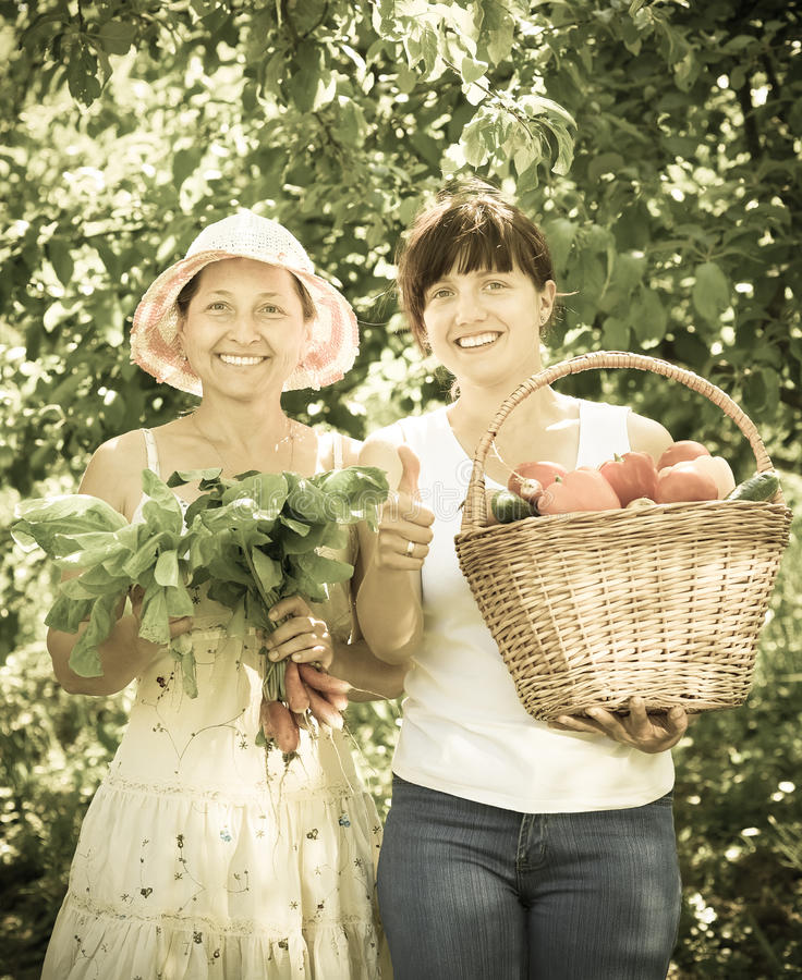 Happy women with harvested vegetables. Two happy women with harvested vegetables in garden royalty free stock photography