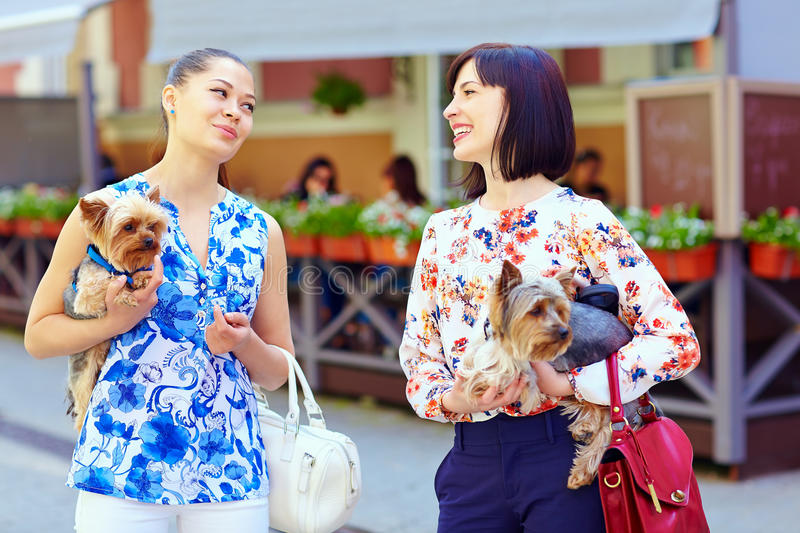 Happy women talking on crowded city street. Hold Yorkshire Terrier royalty free stock images