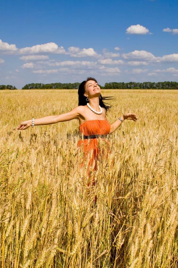 Happy women in the wheat stock photo