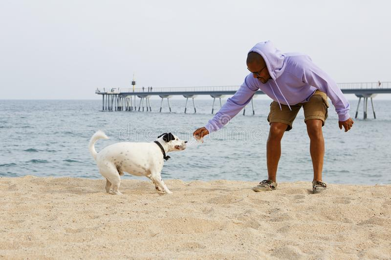 Happy young African-American man hipster in sport hoody playing with his dog on the beach at sunny day. Happy young African-American man hipster in sport hoody royalty free stock photography