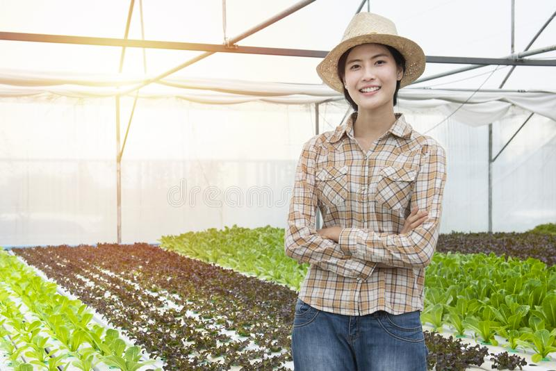 Happy young asian farmer gardener woman standing and cross arm in fresh green oak organic vegetable in greenhouse hydroponic royalty free stock image