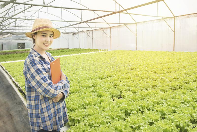 Happy young asian farmer gardener woman standing and cross arm in fresh green oak organic vegetable in greenhouse hydroponic stock image