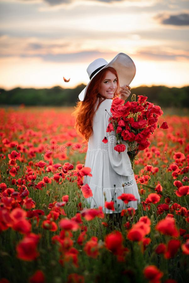 Happy Young beautiful female with bouquet of red poppies stands in flowered field at sunset stock photo