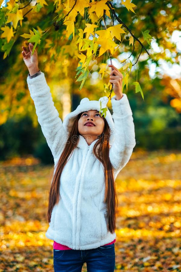 Happy young beautiful woman in autumn park on sunny day picking leaves from the tree, Young woman in white coat during sunset in t royalty free stock photography