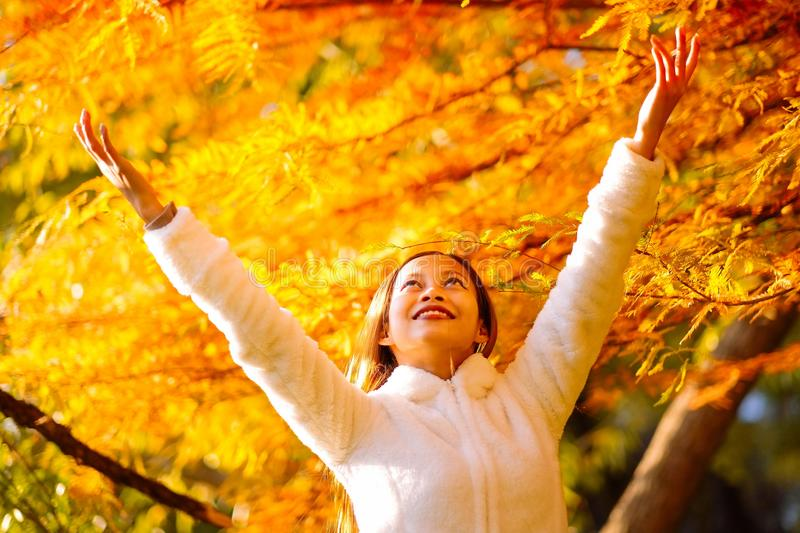 Happy young beautiful woman in autumn park on sunny day, Young woman in white coat during sunset in the park royalty free stock image