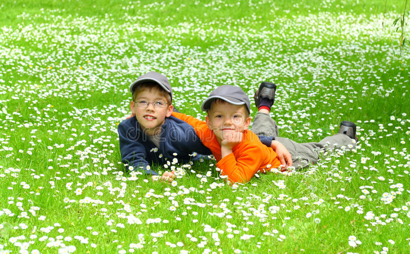 Happy young brothers stock images