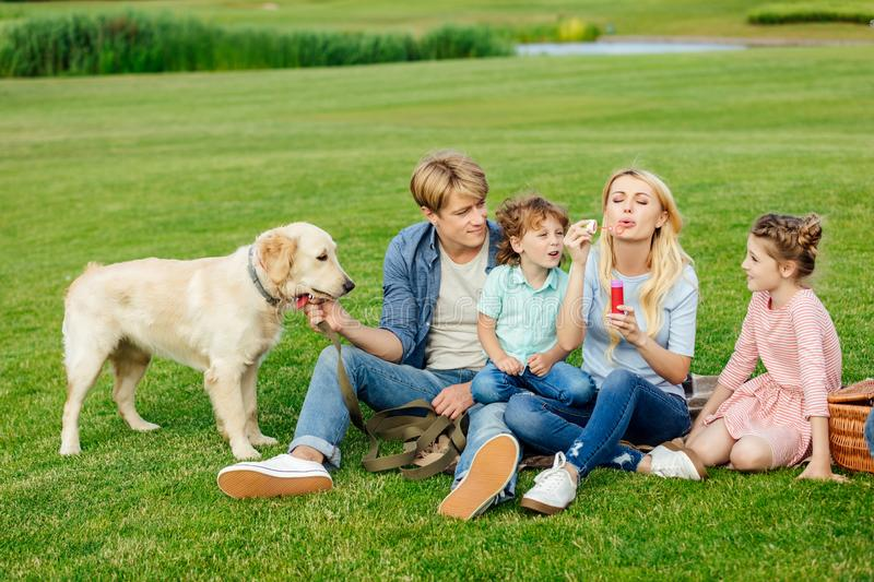 Happy young family blowing soap bubbles while resting with dog. On grass stock photography