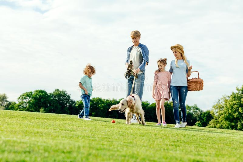 happy young family with picnic basket walking with dog royalty free stock image