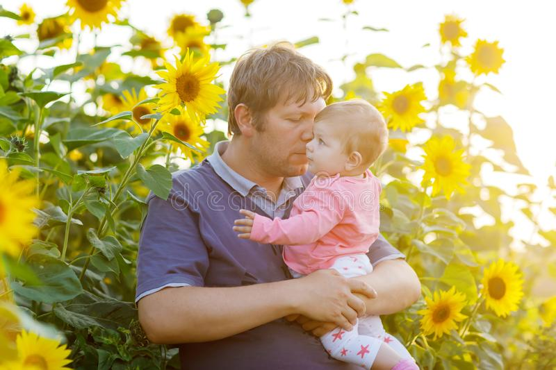 Happy young father having fun with newborn baby daughter in sunflower field on warm summer day, family portrait together royalty free stock photo
