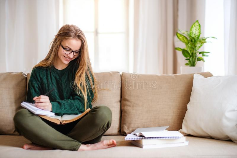 A happy young female student sitting on sofa, studying. Copy space royalty free stock photo