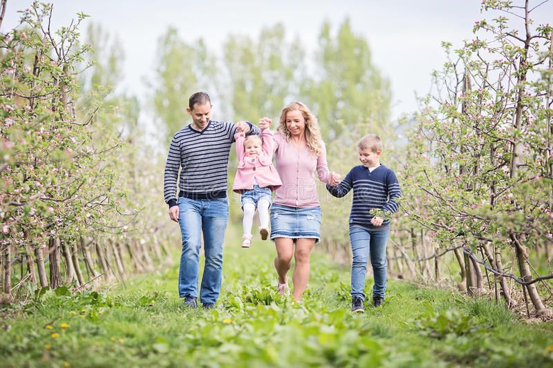 Happy young four member family walking together outdoors in orc. Happy young four member family walking and holding hands together outdoors in orchard, spring stock photos