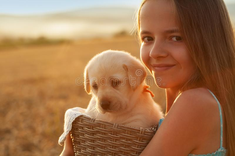 Happy young girl with her adorable labrador puppy dog. Happy young girl holding her adorable labrador puppy dog in a basket - backlit by the setting sun, closeup stock image