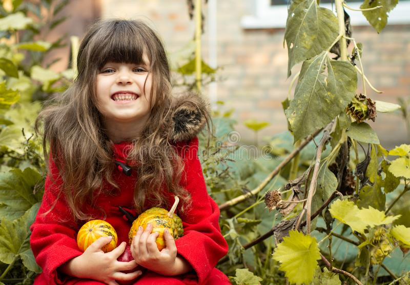 Happy young girl picking a pumpkin for Halloween. Autumn activities for children stock photo