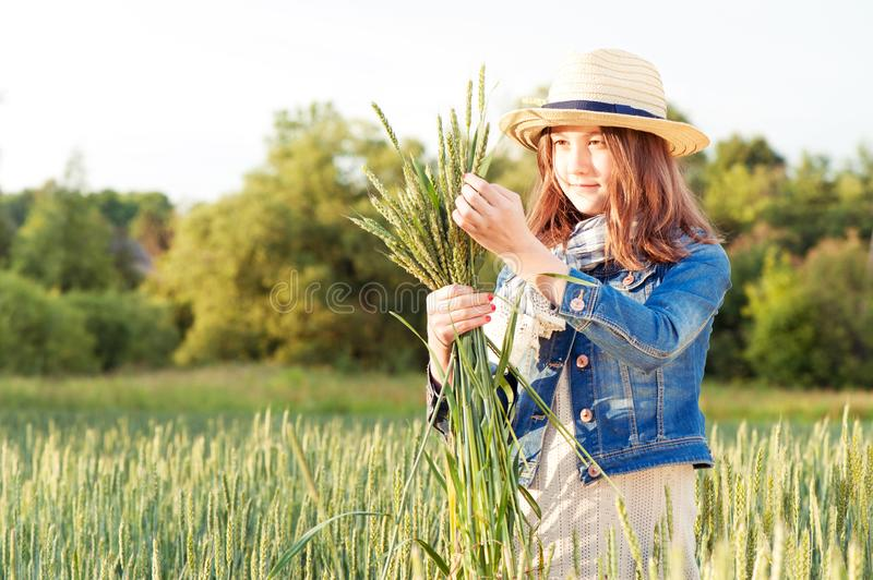 Happy young girl in summer hat picking stems on wheat field. Happy young girl in summer hat collecting stems on wheat field. Summertime outdoors royalty free stock image