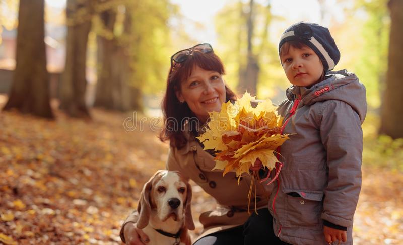 Happy young grandmother with granddaughter and dog. stock images