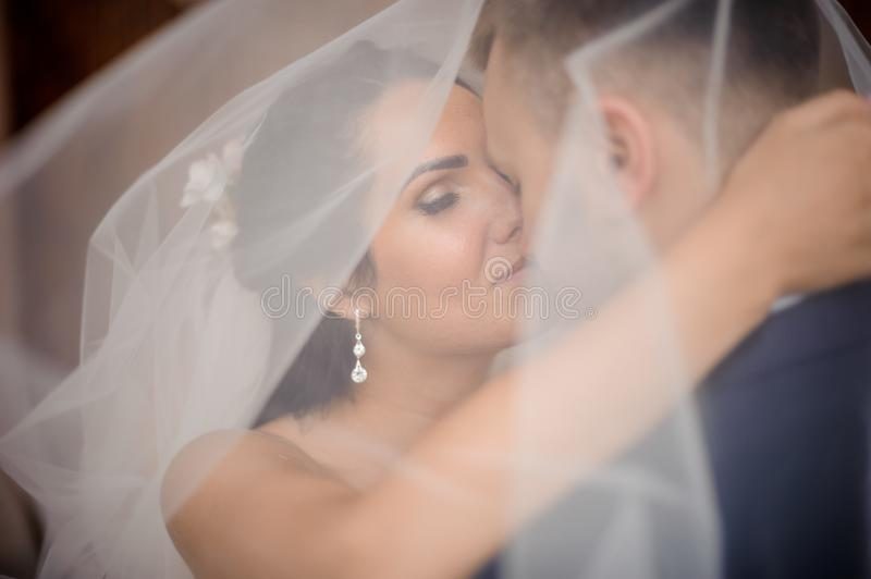 Happy young marring couple kissing under the bride`s veil royalty free stock photo