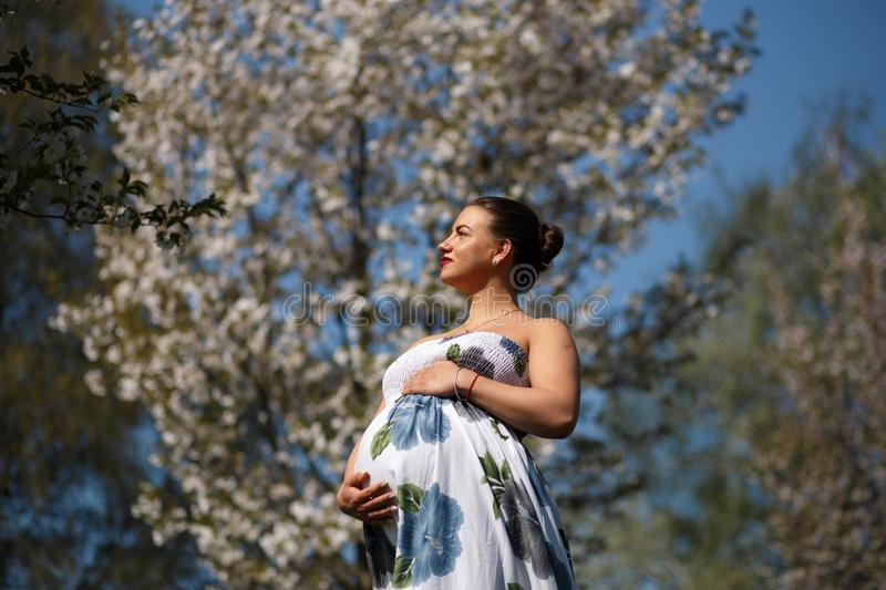 Happy young soon to be mother mom - Young traveler pregnant woman enjoys her leisure free time in a park with blossoming stock image