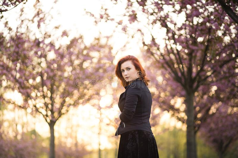 Happy young travel dancer woman enjoying free time in a sakura cherry blossom park - Caucasian white redhead girl - stock images