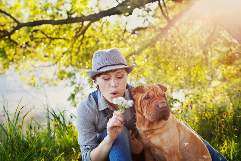 Happy young woman in denim overalls and hat with red cute dog Shar Pei sitting in the lawn in sunset light and blowing on a royalty free stock photo