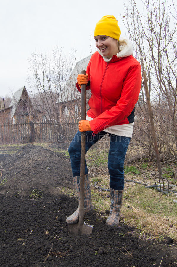Happy young woman farmer digging with a shovel in his garden stock image