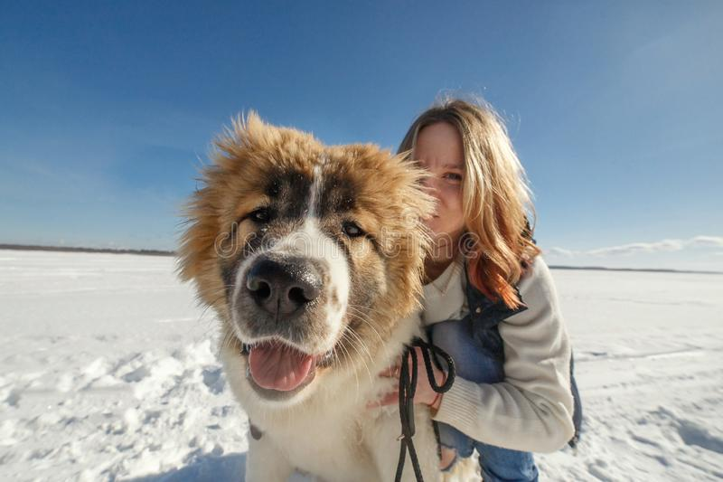 Happy young woman and her Caucasian Shepherd dog are hugging on the snow outside stock images