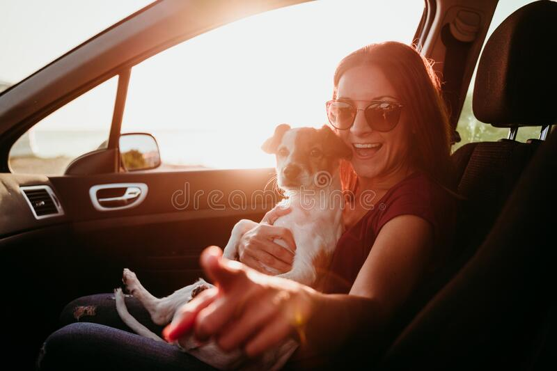 happy young woman and her cute jack russell dog in a car at sunset. travel concept stock photos
