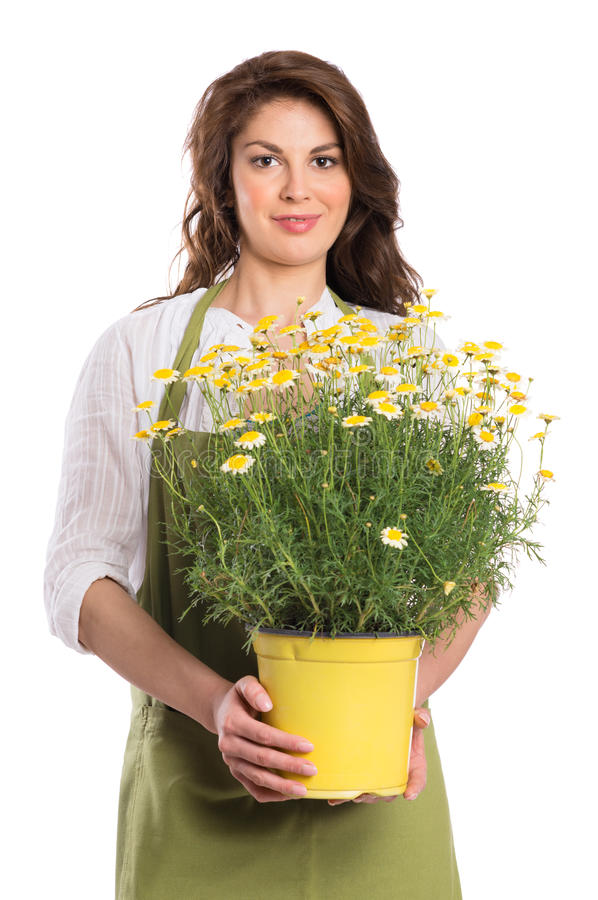 Happy Young Woman Holding Plant Stock Photo - Image of ...