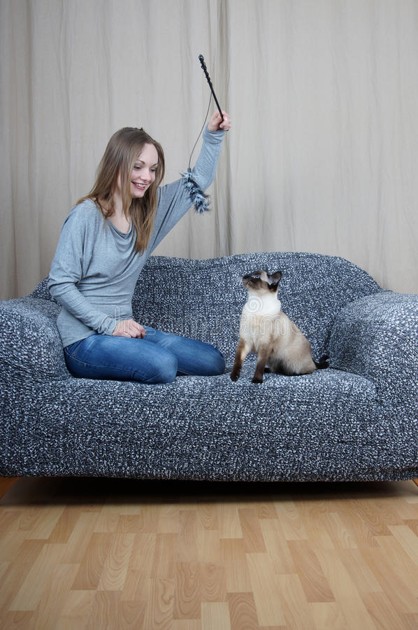 Young woman playing with cat royalty free stock image