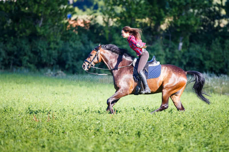 Happy young woman riding horse at sunny summer day stock photos