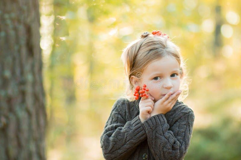 Har den blonda flickan för lilla barnet rönnbäret i händer Hösten parkerar Den lilla nätta flickan i ett brunt stuckit lag har gy arkivfoto