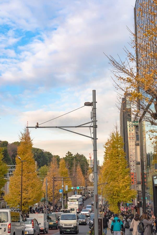 Harajuku, Tokyo, Japan - 21 December 2018: De mening van de Harajukustraat wanneer de draaien van de ginkgoboom geel in daling va stock fotografie