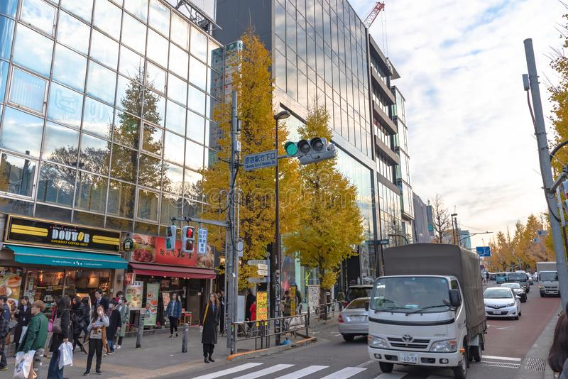 Harajuku, Tokyo, Japan - 21 December 2018: De postmening van Tokyo Harajuku wanneer de draaien van de ginkgoboom geel in daling v stock fotografie