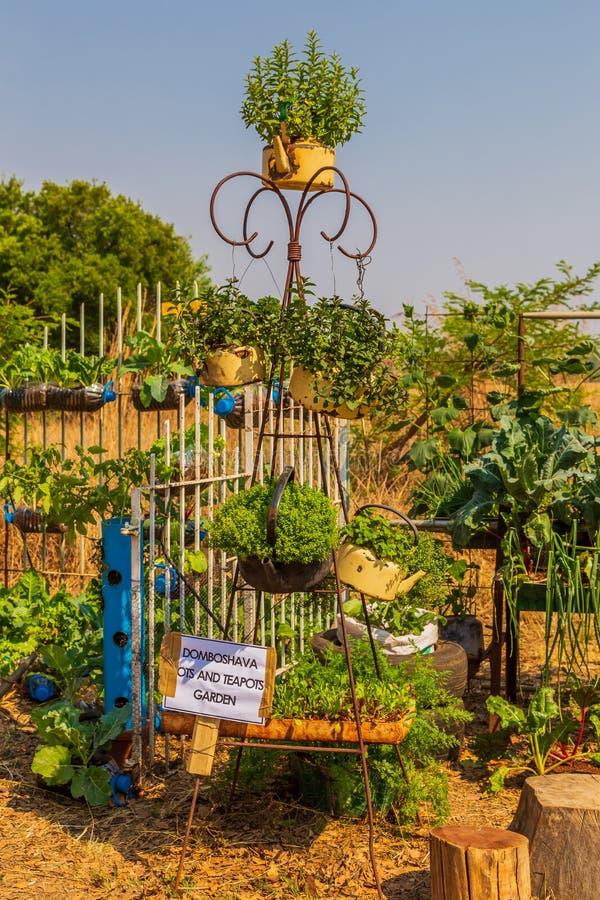 Harare, Zimbabue, 10/10/2015: Competencia sostenible de producción de alimentos con ollas antiguas foto de archivo libre de regalías