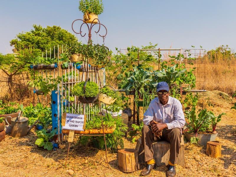 Harare, Zimbabue, 10 de octubre de 2015: Competencia de crecimiento sostenible de alimentos fotos de archivo