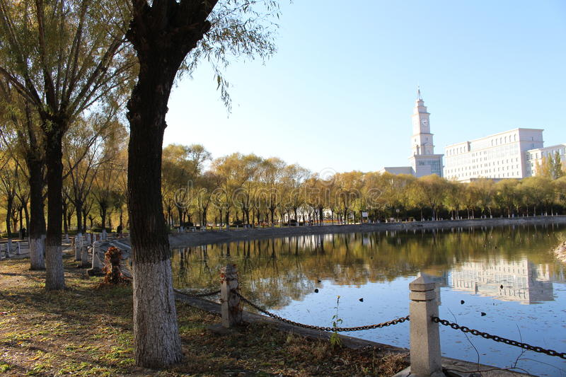 Harbin Normal University`s lakeside lakefront. The spring with Harbin Normal University`s lakeside lakefront.and some trees royalty free stock image