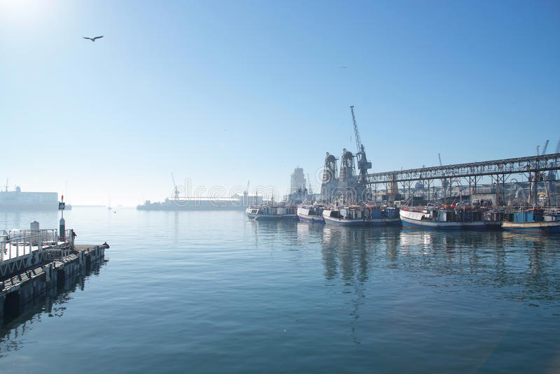 Download Harbor at Cape Town stock image. Image of horizontal - 19346143