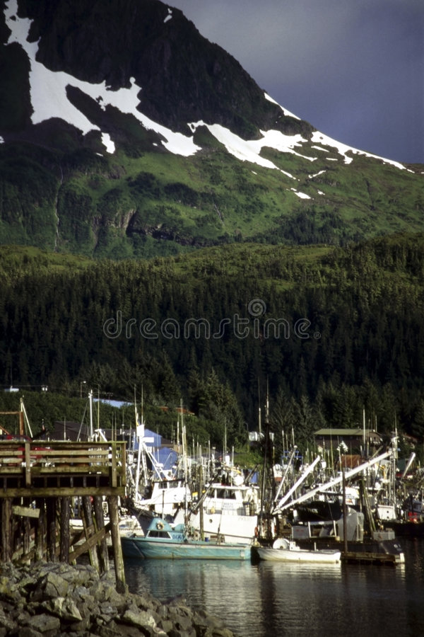Harbor, Cordova,Alaska. Fishing boats in harbor of Cordova, Alaska stock images