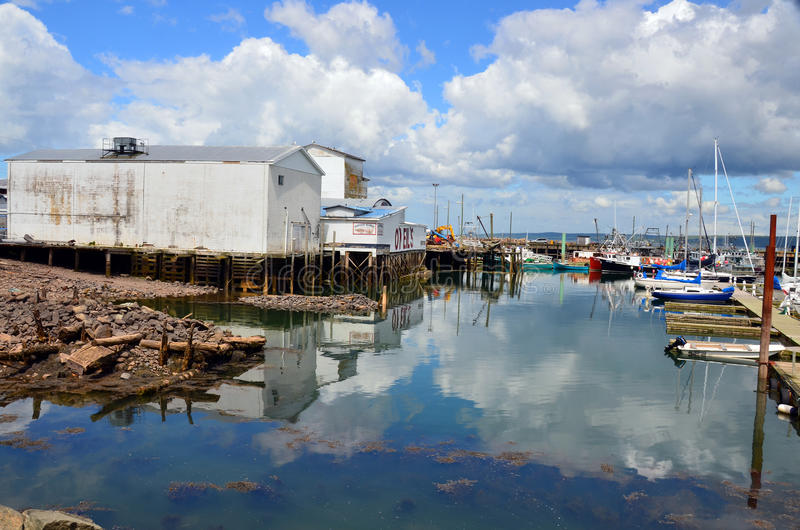 Harbor of Digby royalty free stock photo