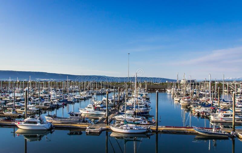Harbor in Homer, Alaska. The harbour in Homer, Alaska royalty free stock images