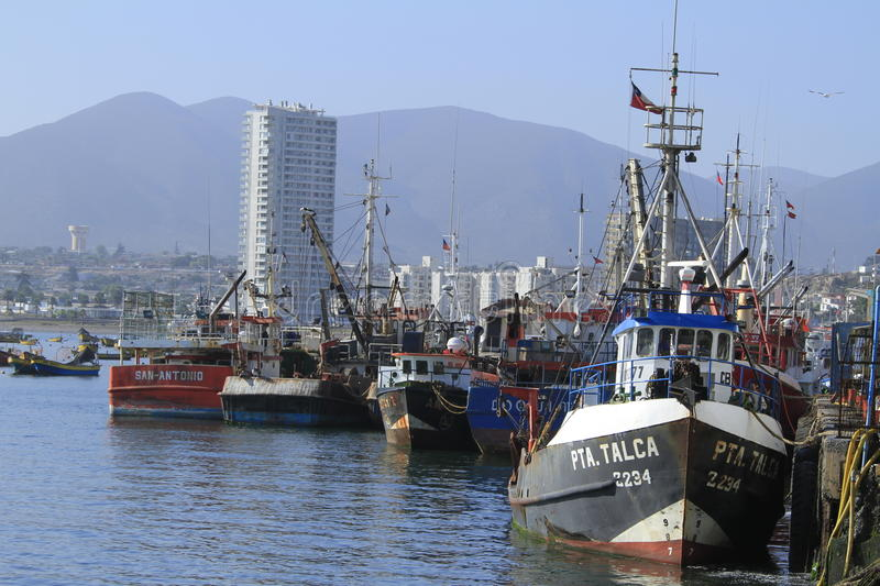 Harbour at Coquimbo Chile royalty free stock photography