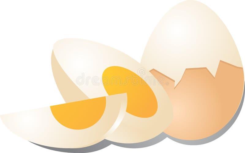 Hard boiled eggs vector illustration