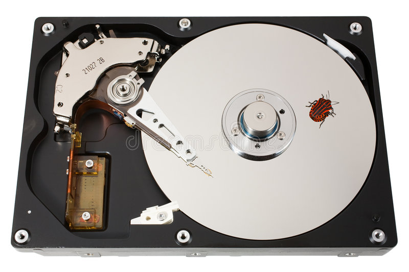 Hard Disk, Bug, One Royalty Free Stock Photography