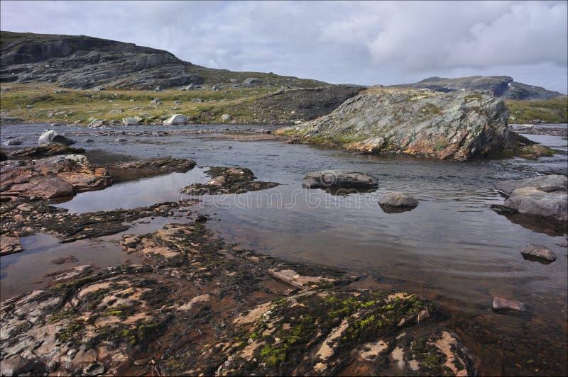 Hardangervidda, Noorwegen stock foto
