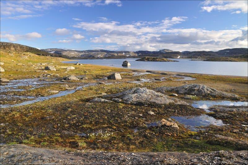 Hardangervidda, Noorwegen stock foto's