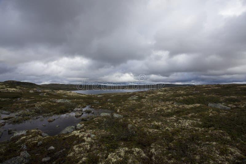 Hardangervidda, Noruega fotos de archivo