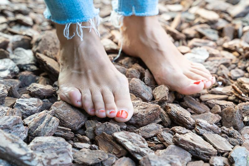 Hardening feet barefoot walking to different surfaces and temperatures according to Sebastian Kneipp philosophy.  stock image
