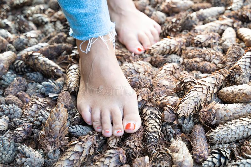 Hardening feet barefoot walking to different surfaces and temperatures according to Sebastian Kneipp philosophy.  royalty free stock photo