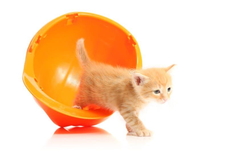 hardhat figlarki pomarańcze mała zdjęcie stock