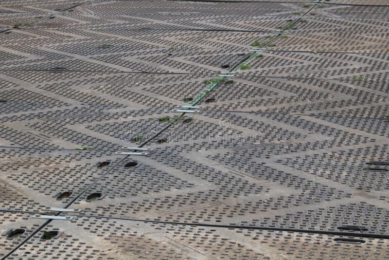 Hardstanding über Gras mit Zickzackentwurf - Bild lizenzfreie stockbilder