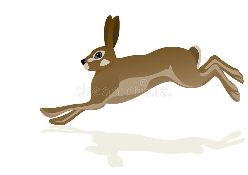 hare royaltyfri illustrationer